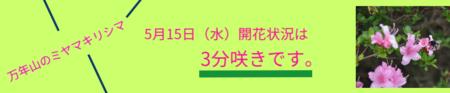 21D7DC37-6B3E-4853-82F3-EFDDCACFA44E.png